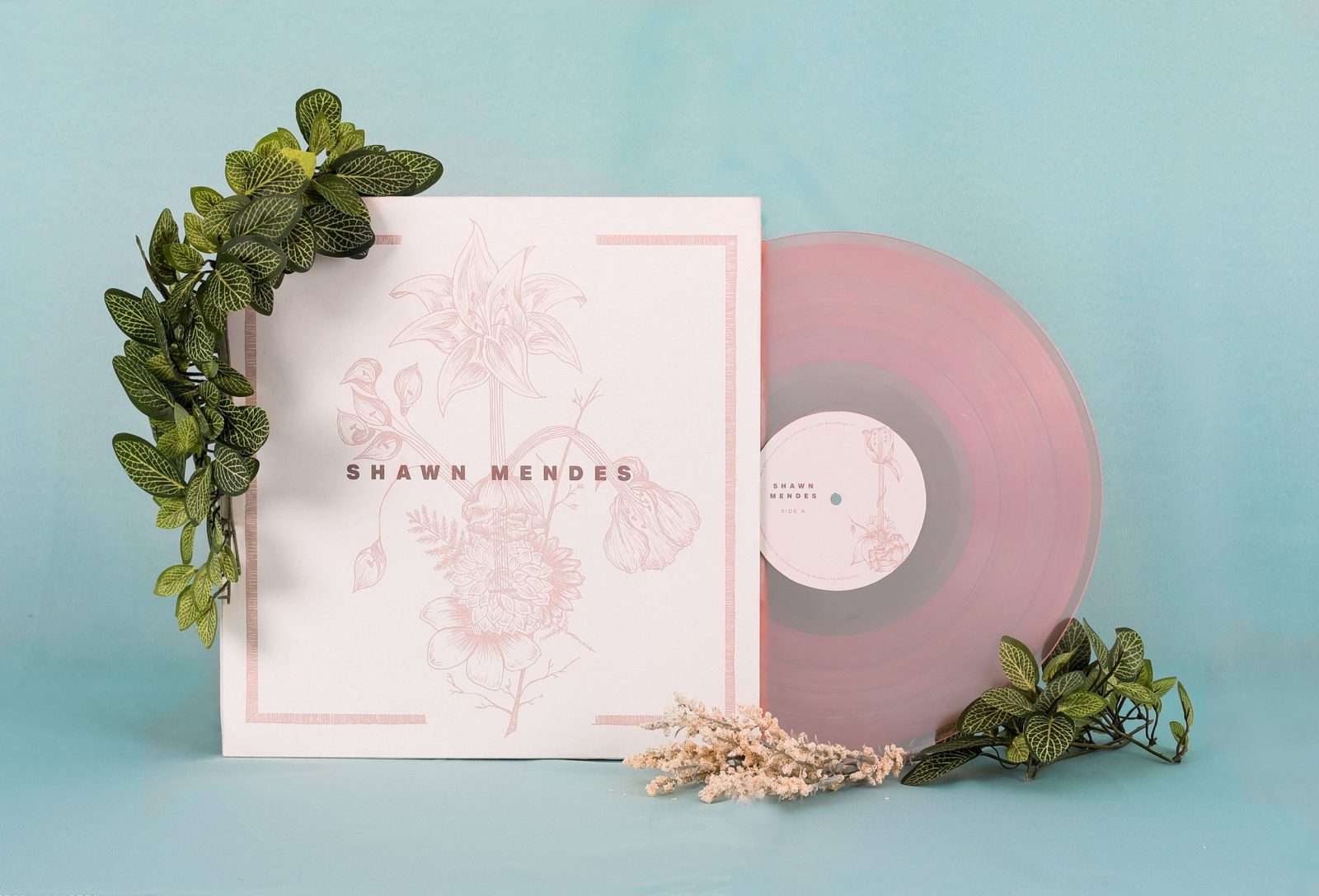 Full Record Packaging Design for Shawn Mendes