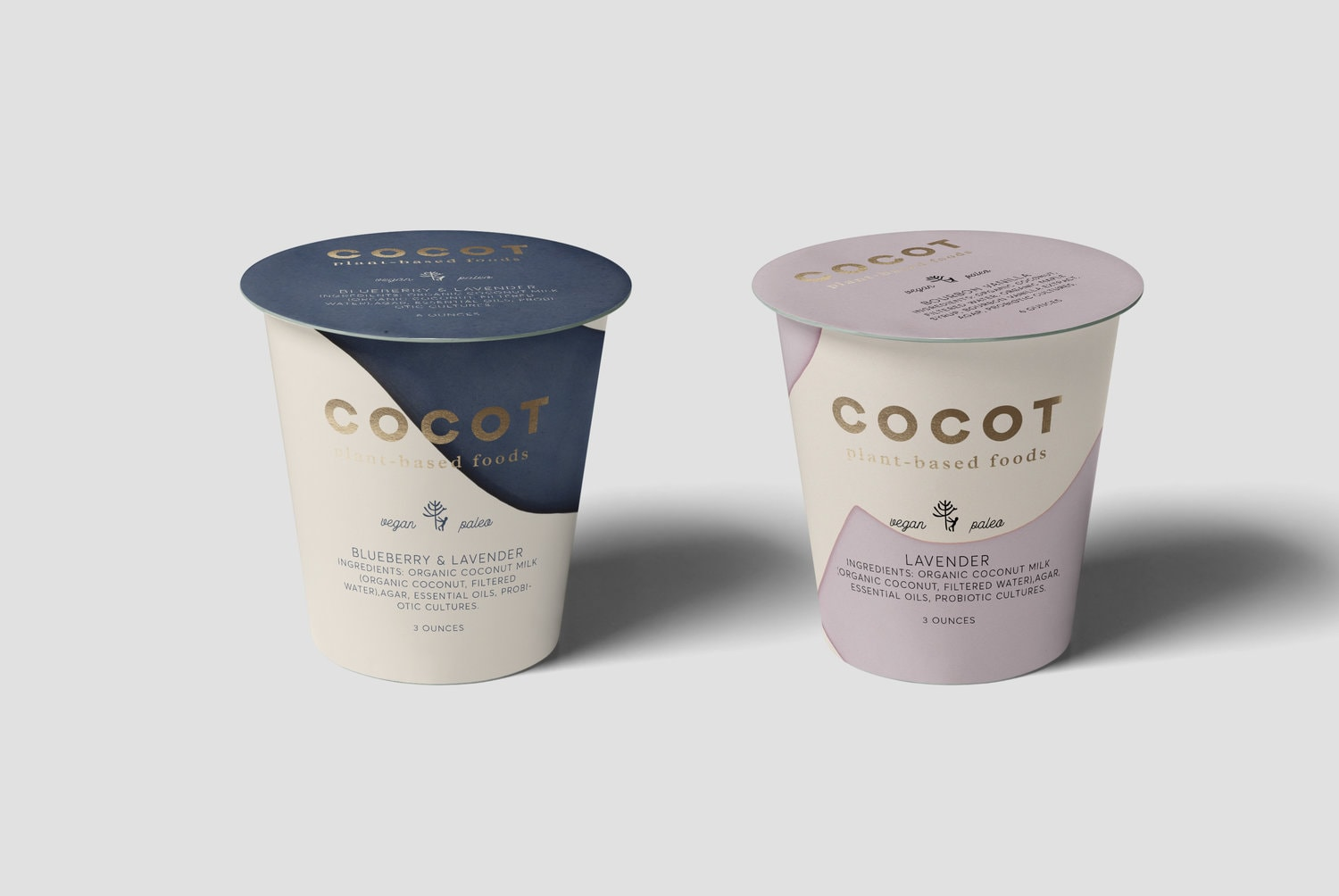 A Concept for Brand and Packaging Design for Plant-Based Foods from Mexico