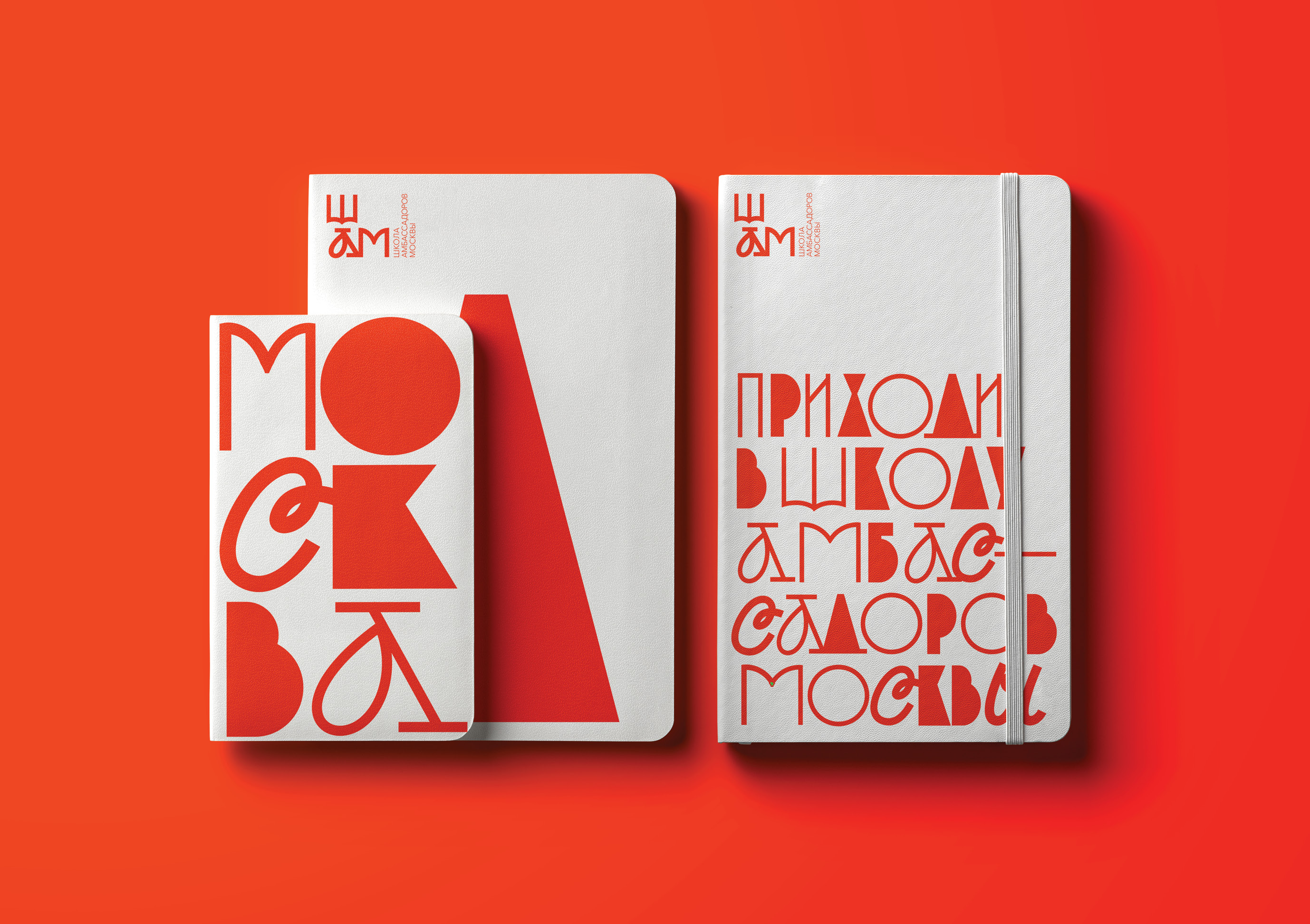 The School of Ambassadors of Moscow Branding Concept Design by Tanya Dunaeva