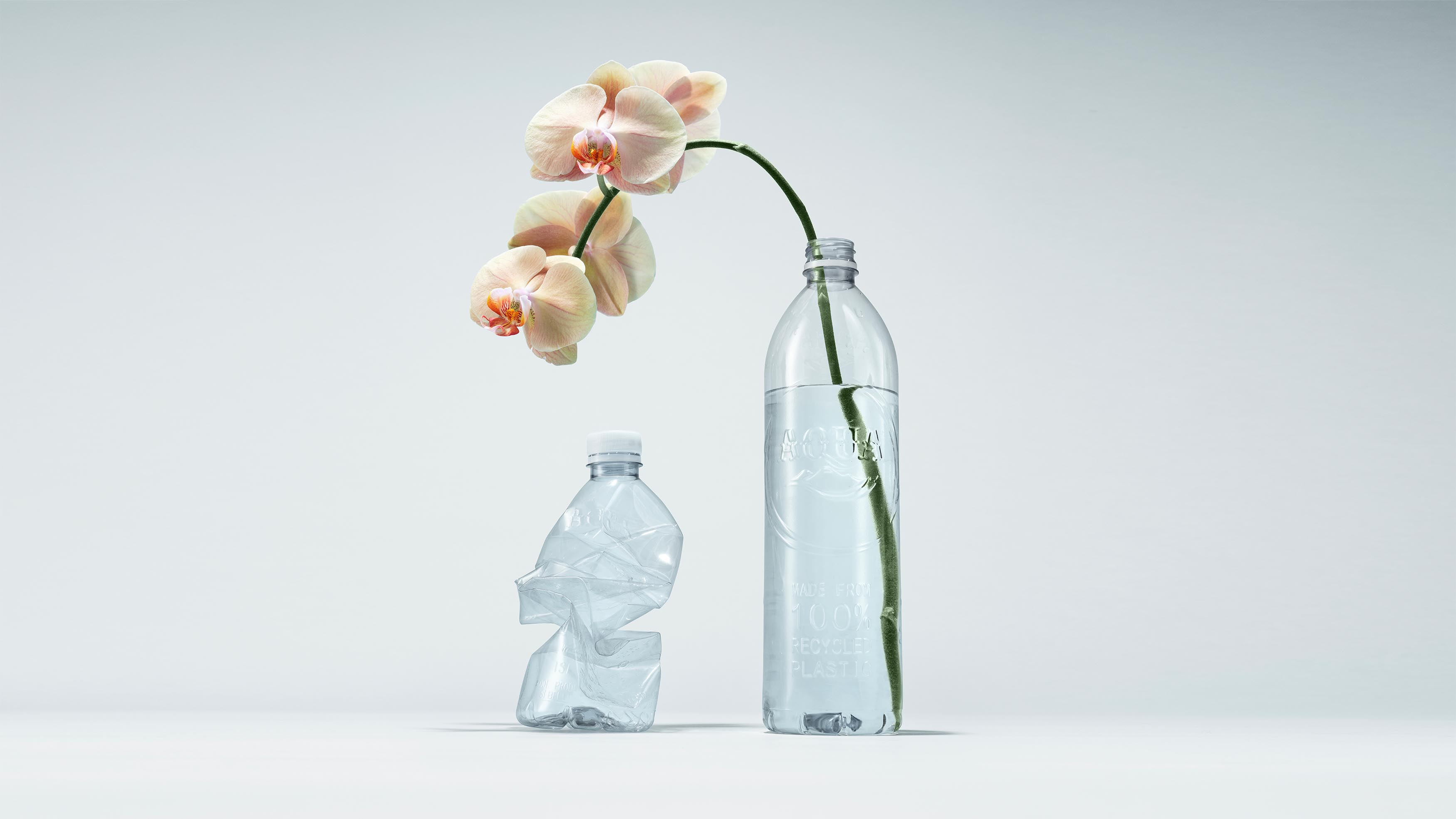 Everland Created an Identity for Aqua's Recently Launched a Bottle Made from 100% Recycled Plastic