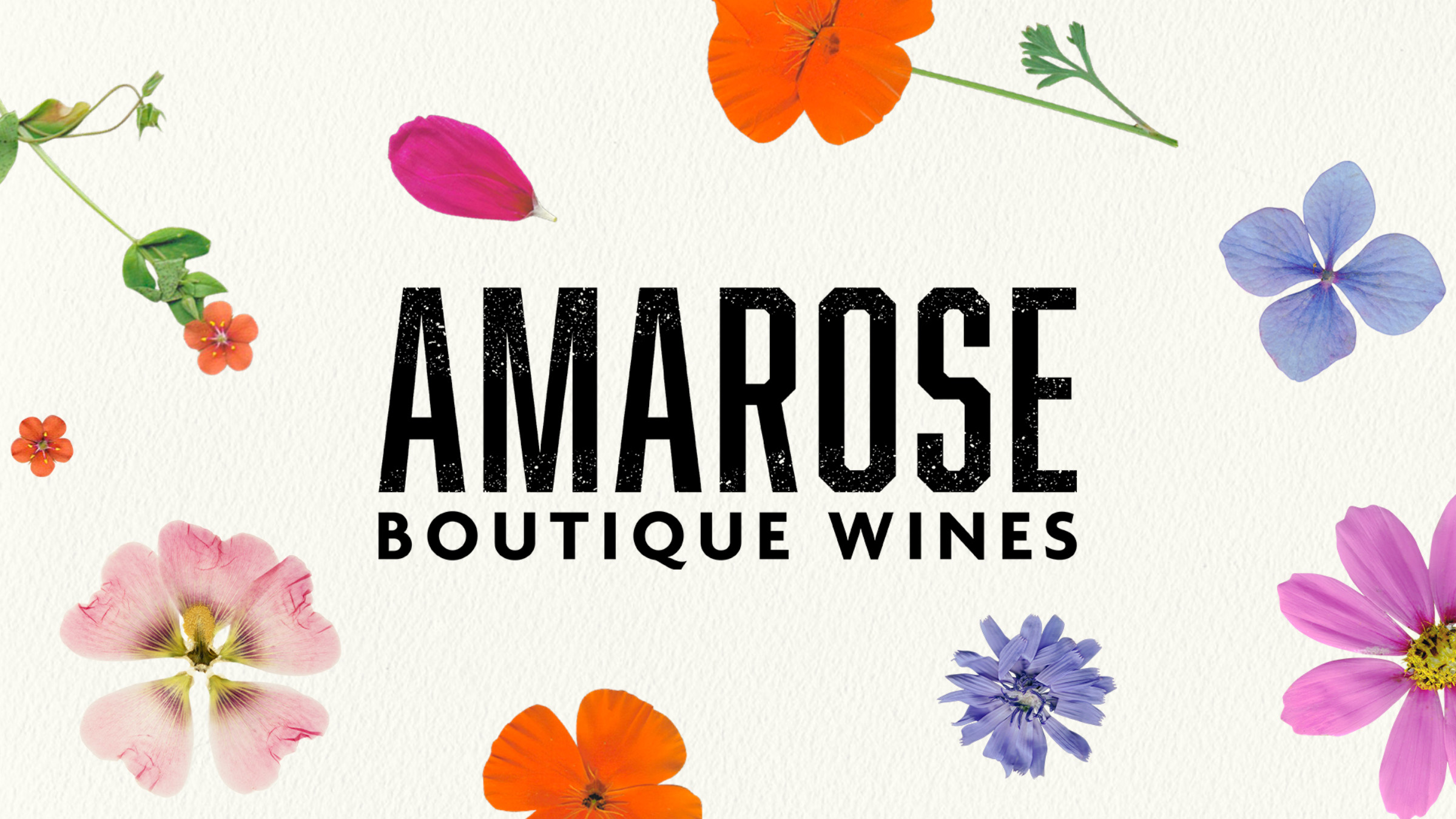 Boutique Rosé Wine for US Millennials: Disrupting a Traditional Category Designed by Kingdom and Sparrow