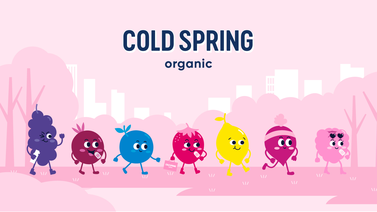 Cold Spring Organic Popsicle Brand Identity and Packaging Design