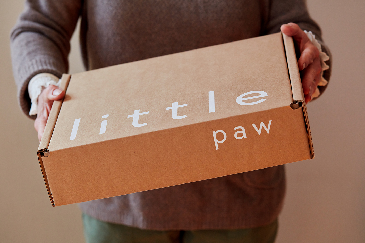 Almighty Creative Studio Create Branding and Packaging Design for Little Paw