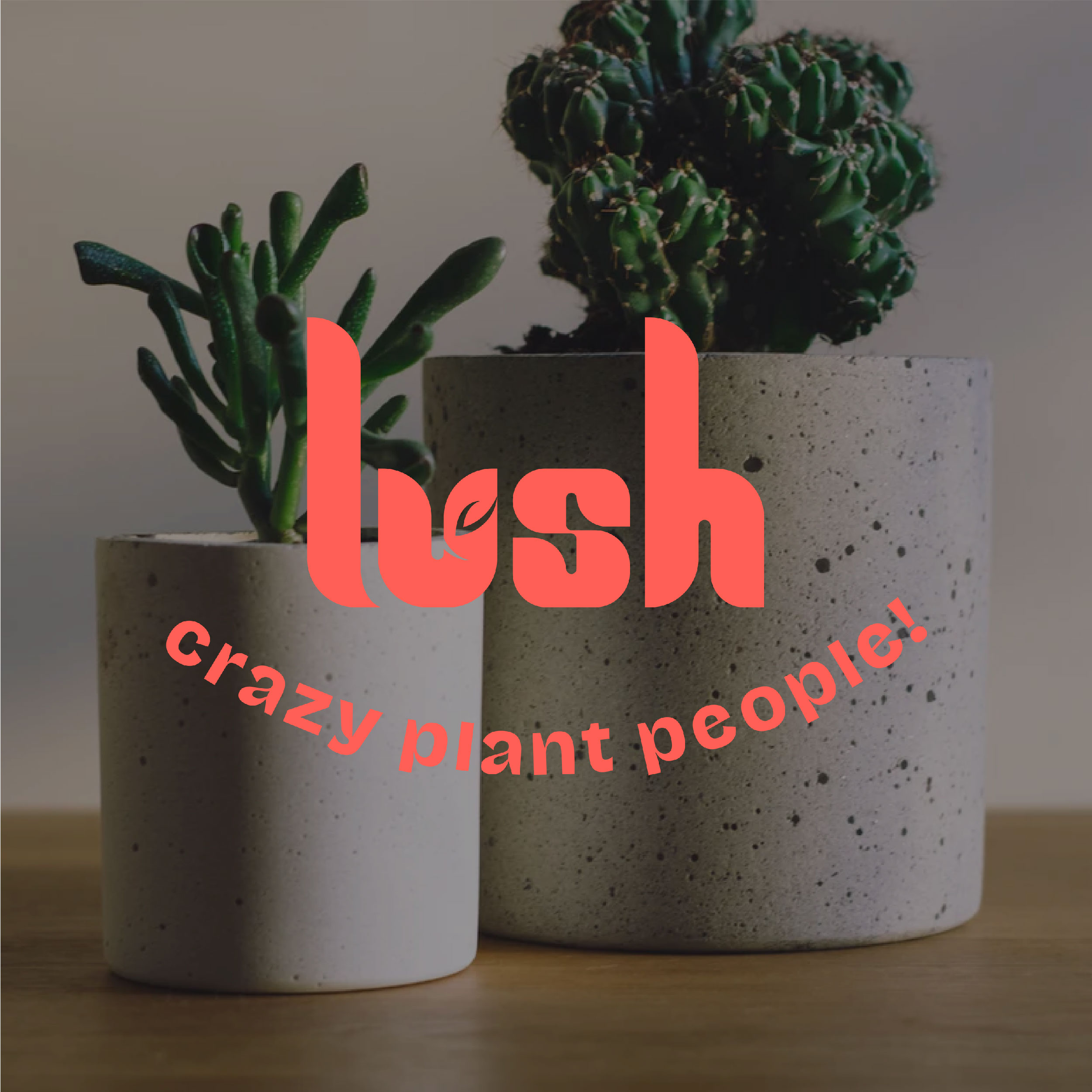 Lush Crazy Plant People Branding Designed by Aishwarya Agrawal