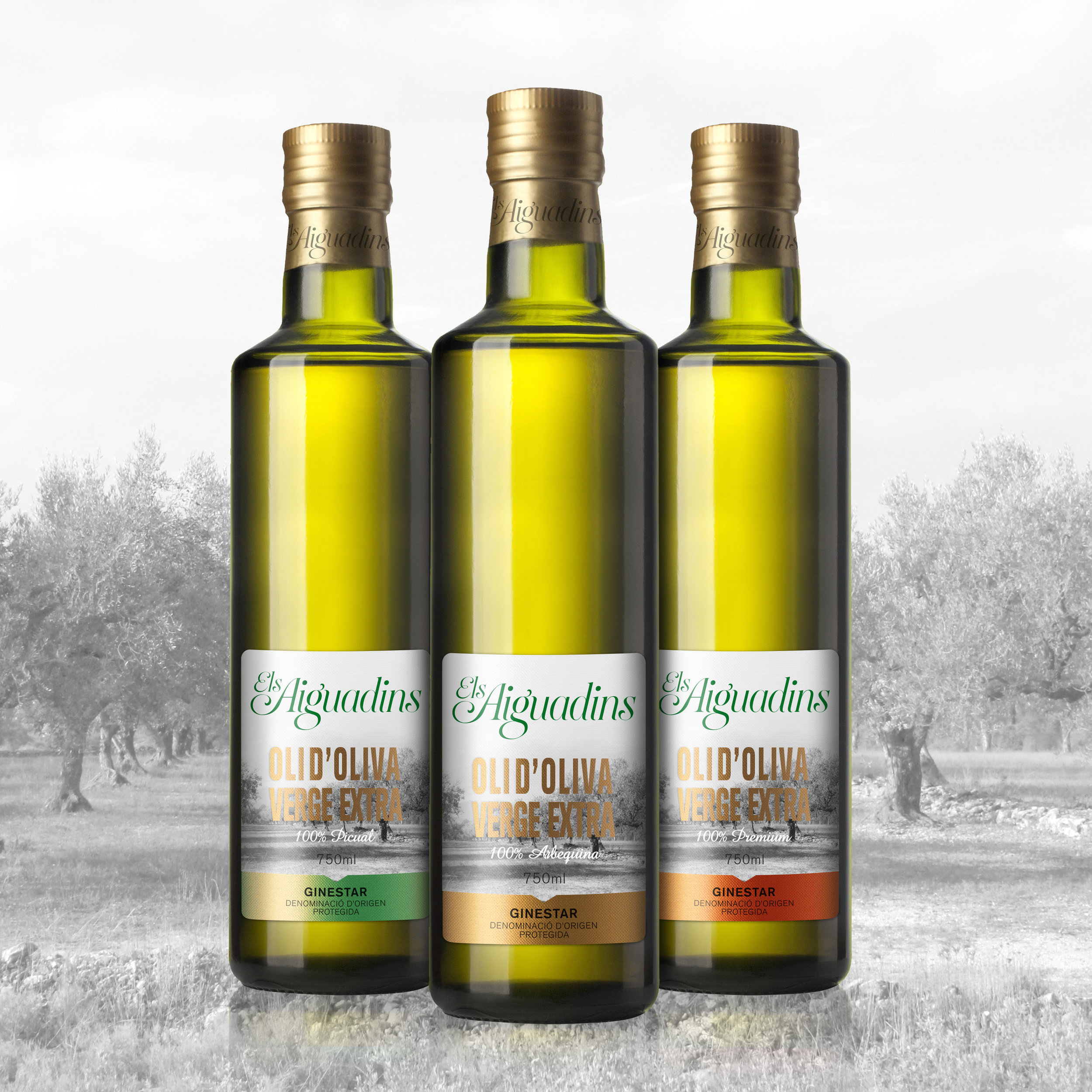 Brand and Packaging for Olive Oil from Spain
