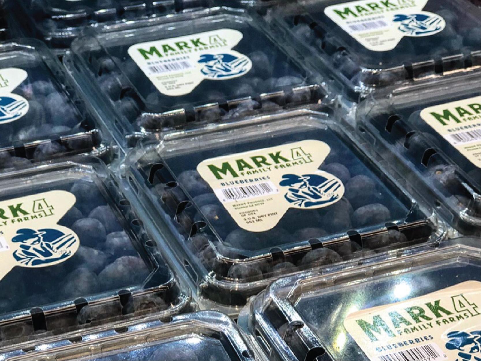 New Branding & Packaging for South Georgia Blueberry Farm