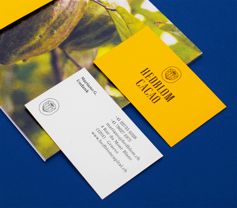 Branding for Cacao Flavour Studio from Switzerland / World Brand Design Society