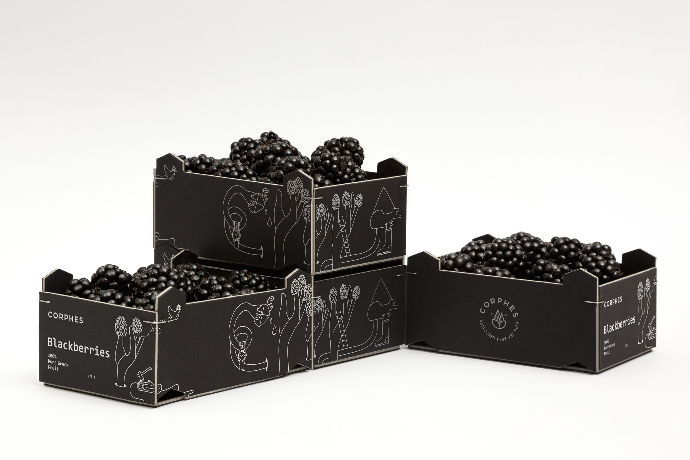 Branding and Packaging Design for Bio Blackberries Highest Altitude Natural Cultivation from Greece