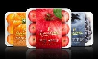 Prompt Design – JL Fruit Packaging Design