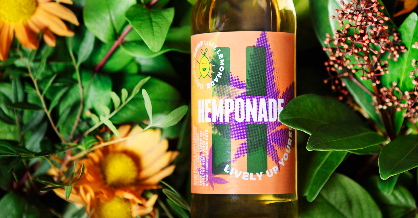Branding and Packaging Design for Hemponade®
