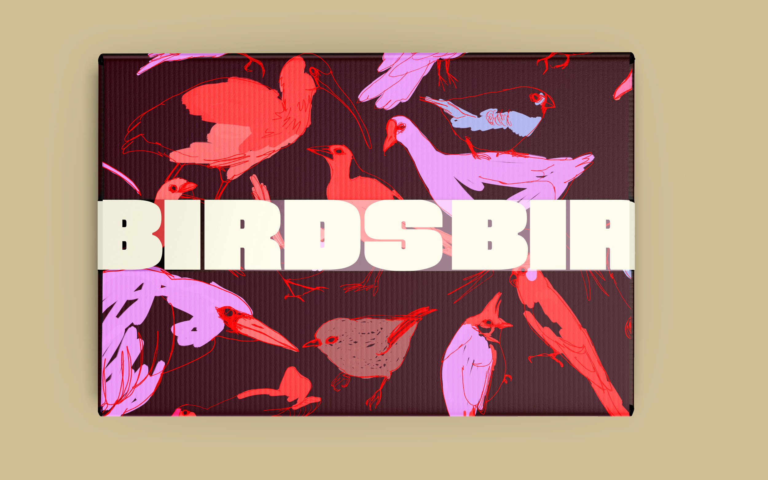 Branding and Packaging for the BIRDS Café