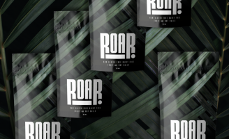 Roar Fruit and Nut Balls Branding and Packaging