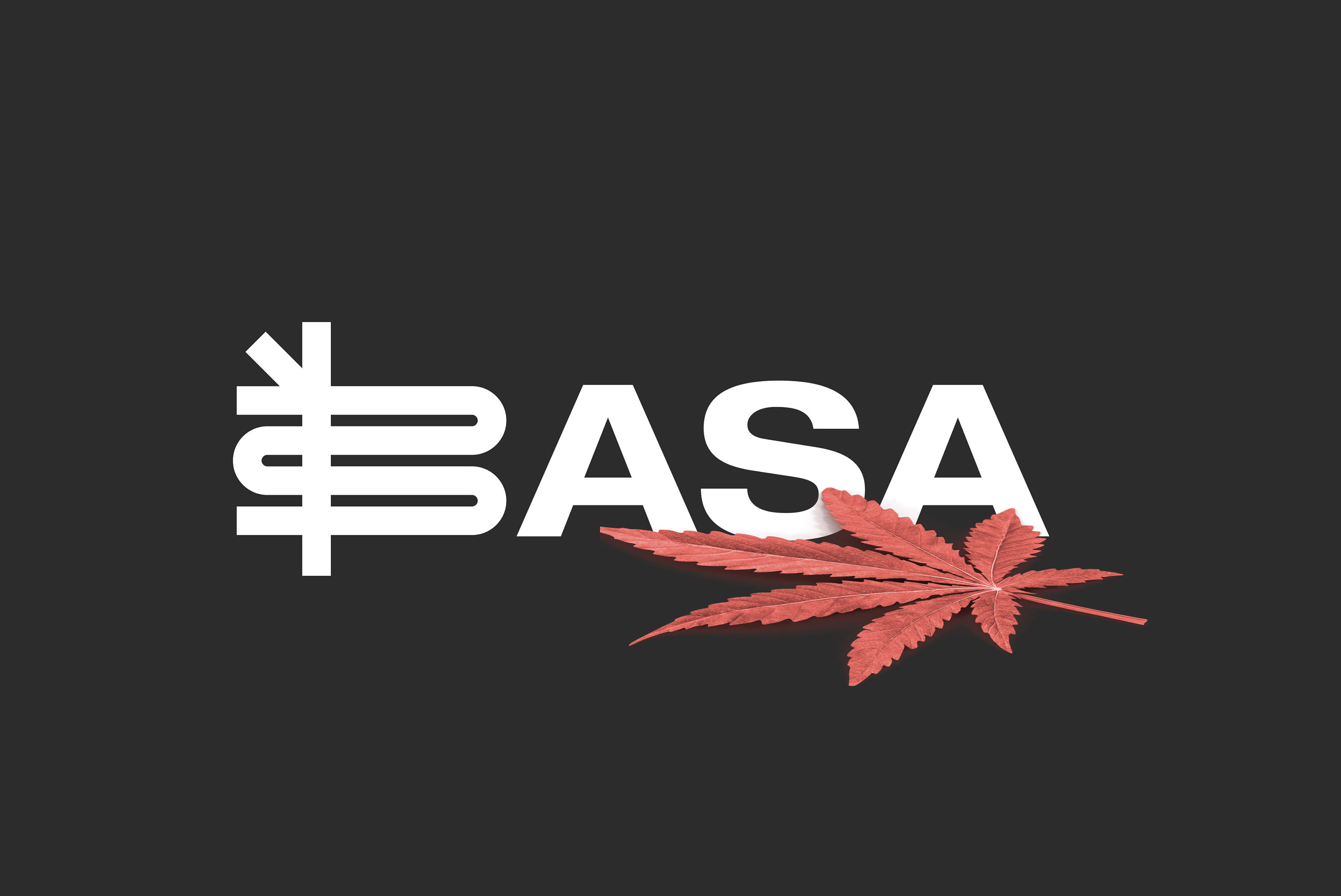 Wunderdogs Creates Brand Identity for Basa: San Francisco's Oldest Cannabis Dispensary