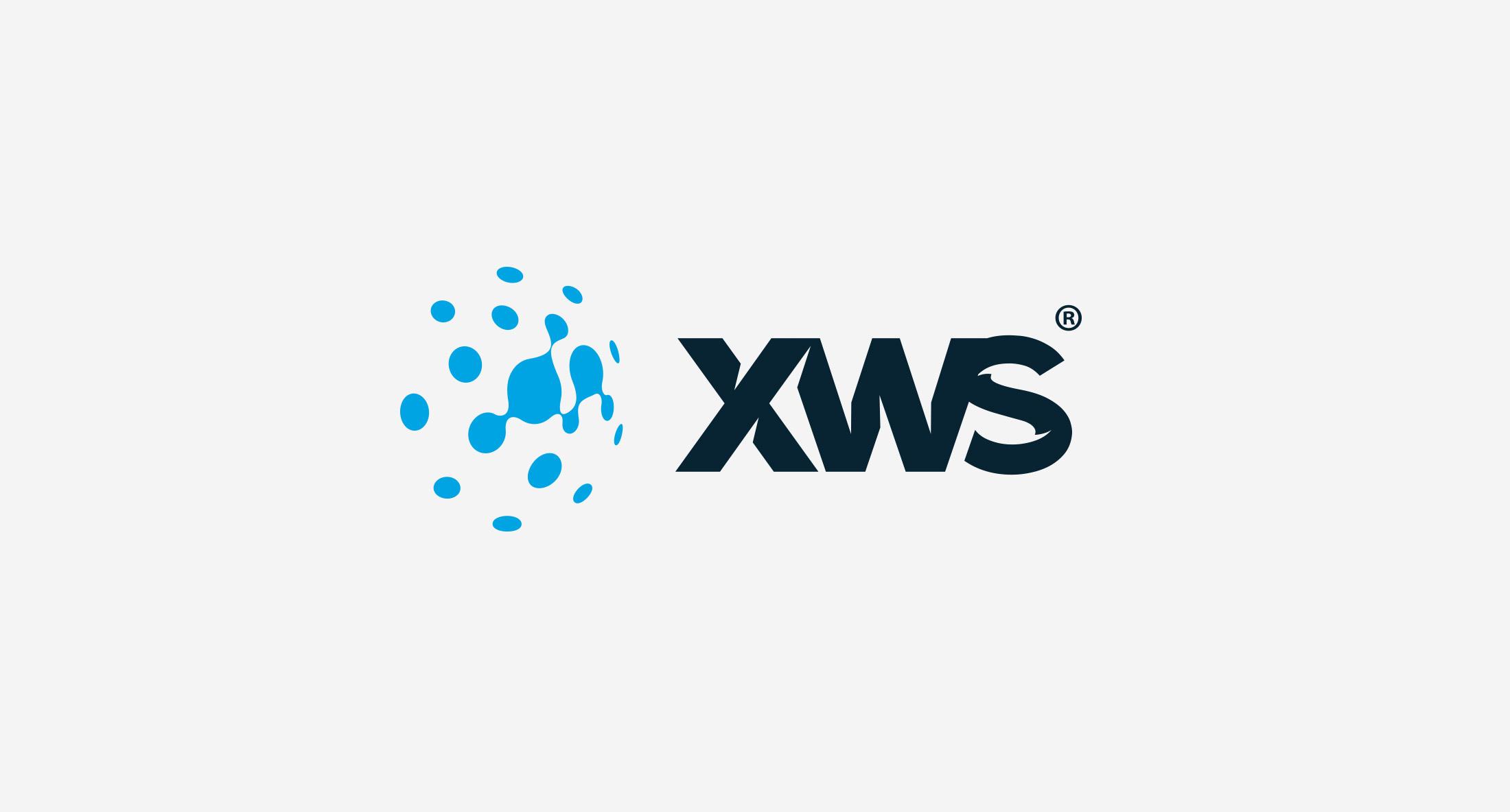 Creation of XWS Corporative Identity