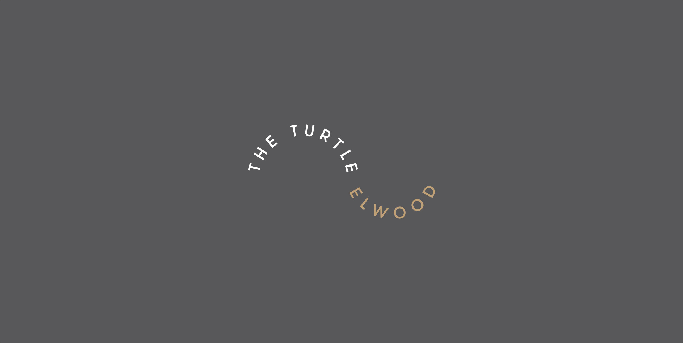 The Turtle – Melbourne Cafe Branding