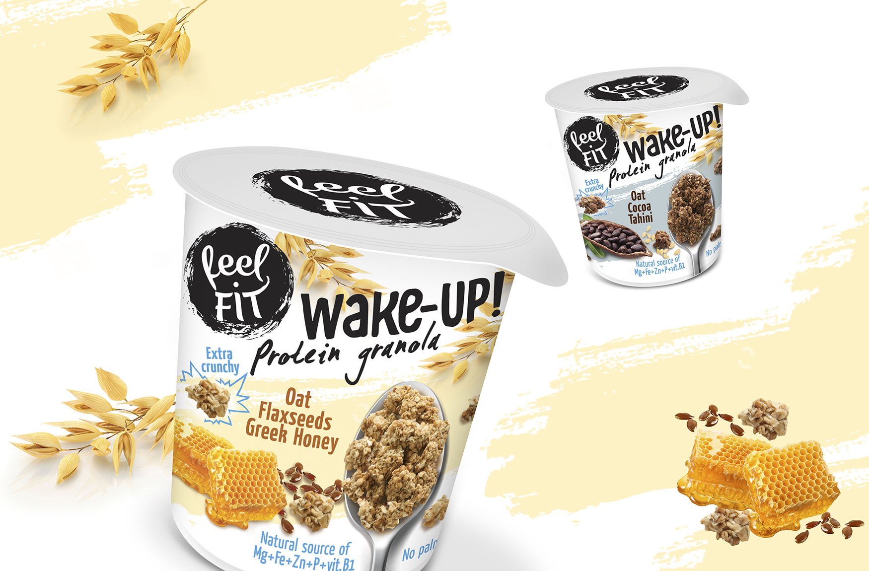 FeelFit – A New Brand of Healthy Snacks