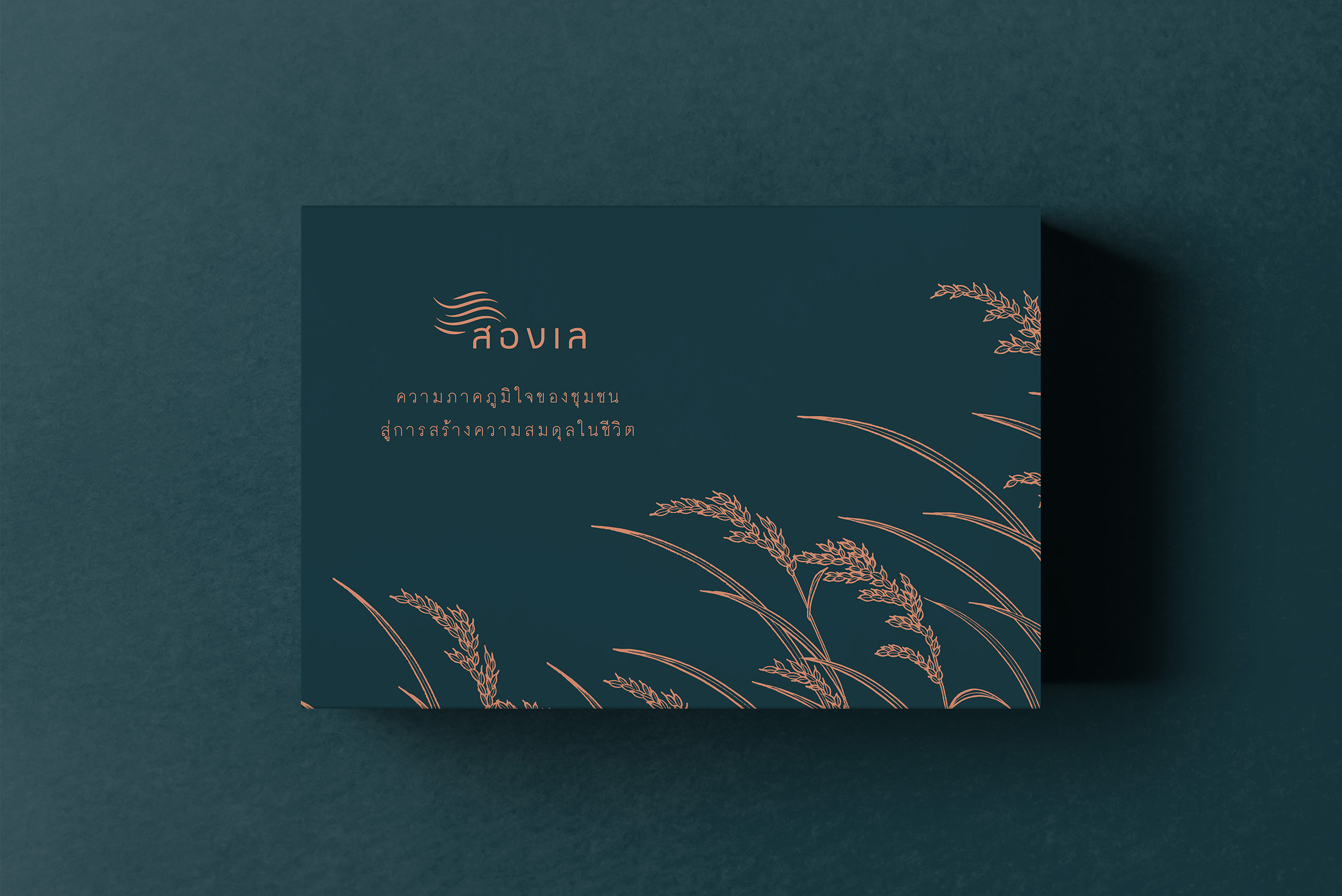 RD 43 RICE Pack and Premium Rice Box Sets by Forward Design Studio