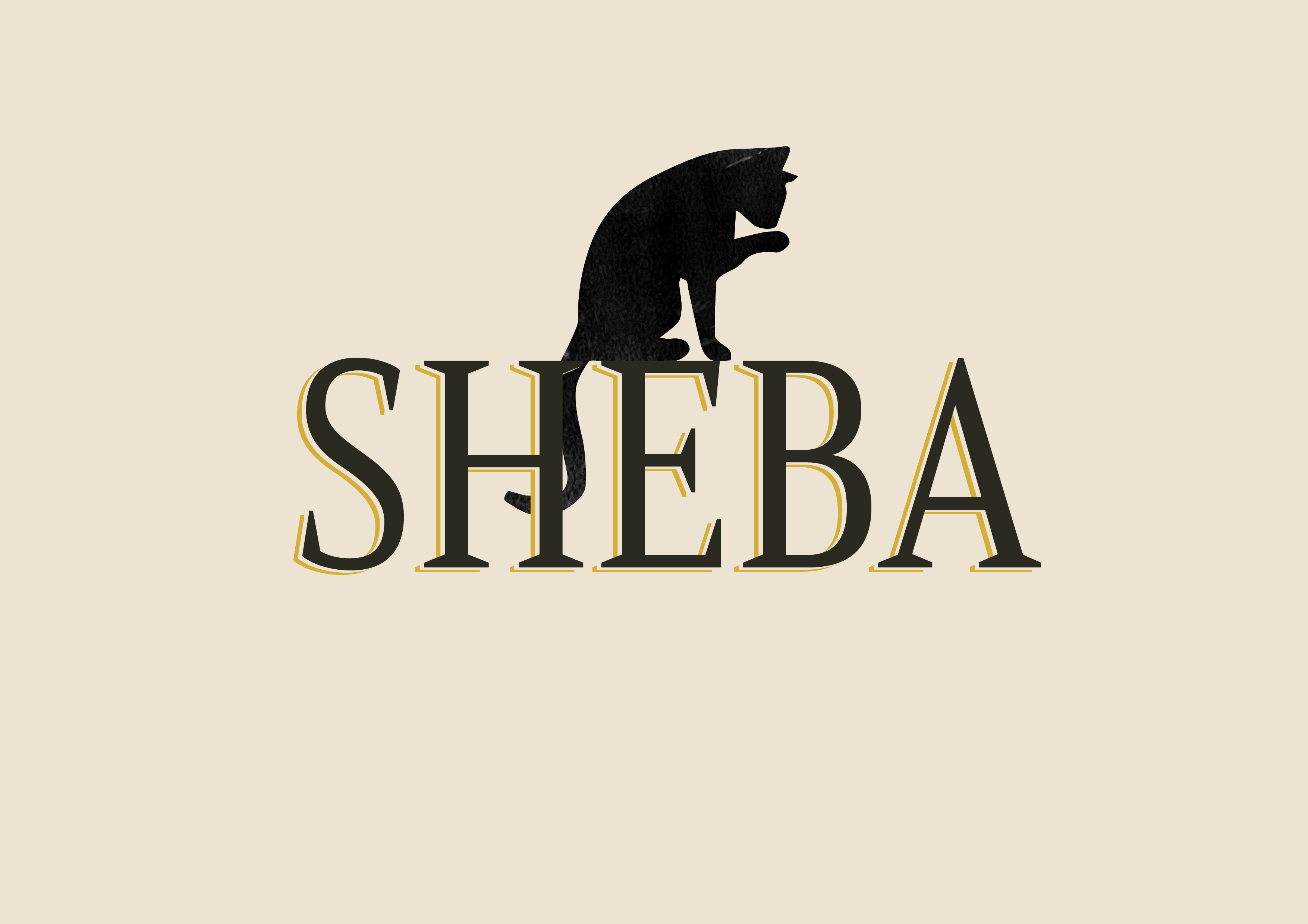 Sheba Re-brand Packaging and Branding Student Concept