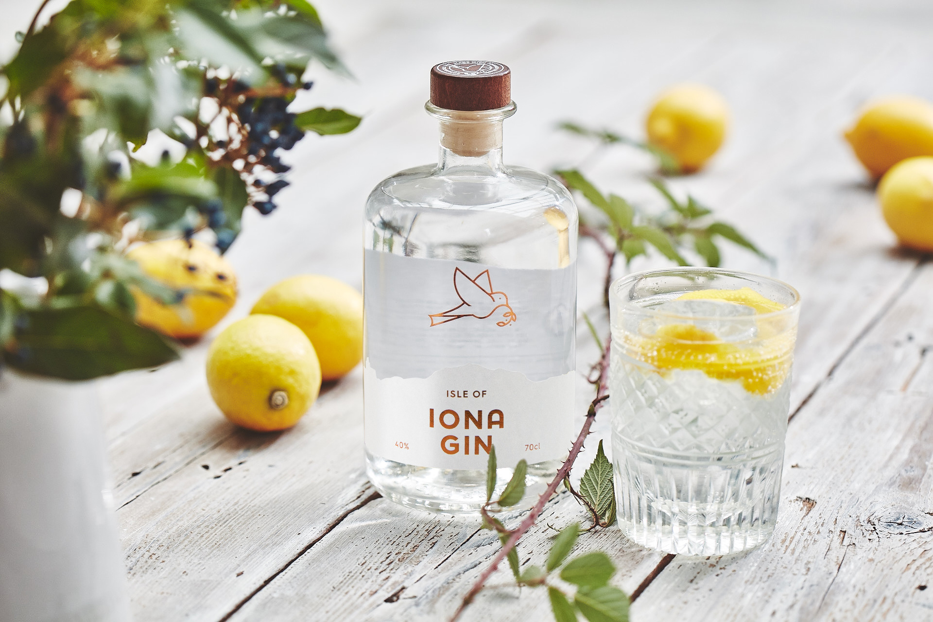 Brand and Packaging Design for Isle of Iona Gin by My Creative