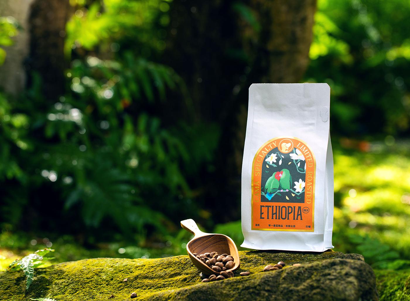 Single Origin Coffee Selection for Cama Café Packaging ...