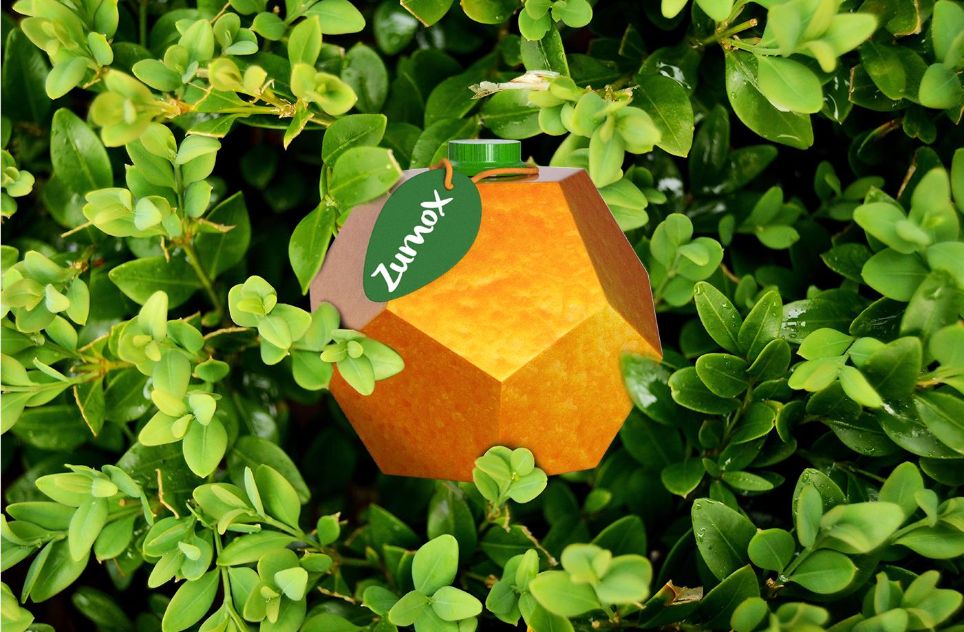 Student Concept for Zumox Orange Juice Created Lola Téllez