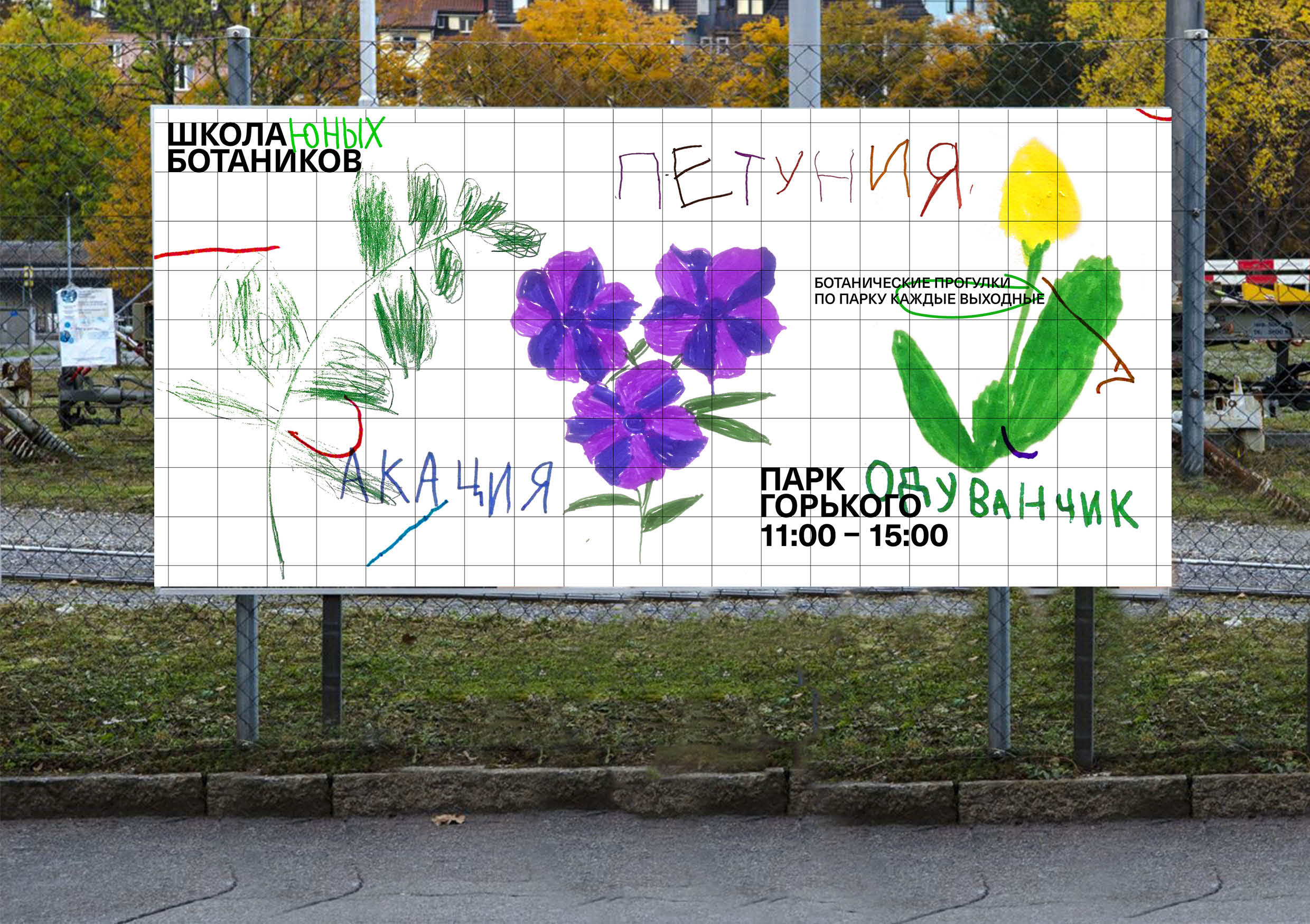 Student Concept Identity for Young Botanists School Design by Natalia Radnaeva