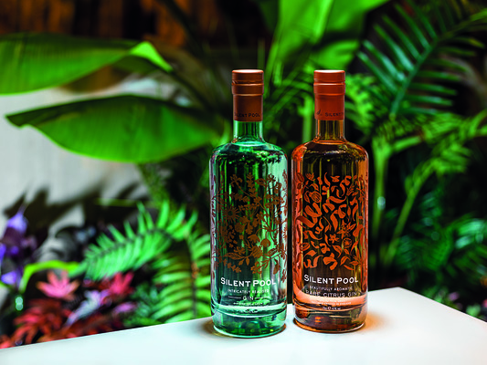 Seymourpowell Unveils Fresh Packaging Design for Silent Pool Rare Citrus Gin