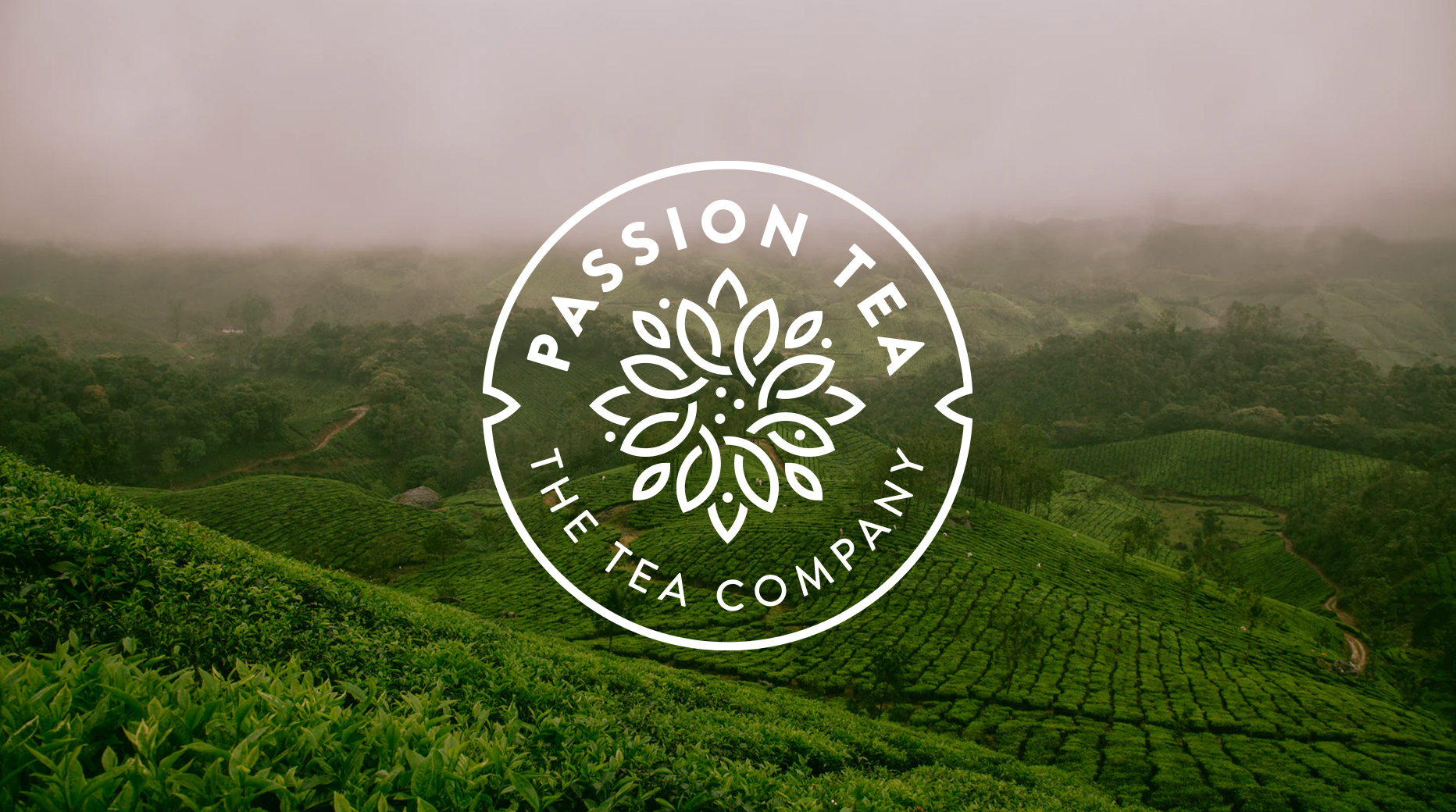 Rebranding for Passion Tea Product Line of the Cafés Cornellà Brand