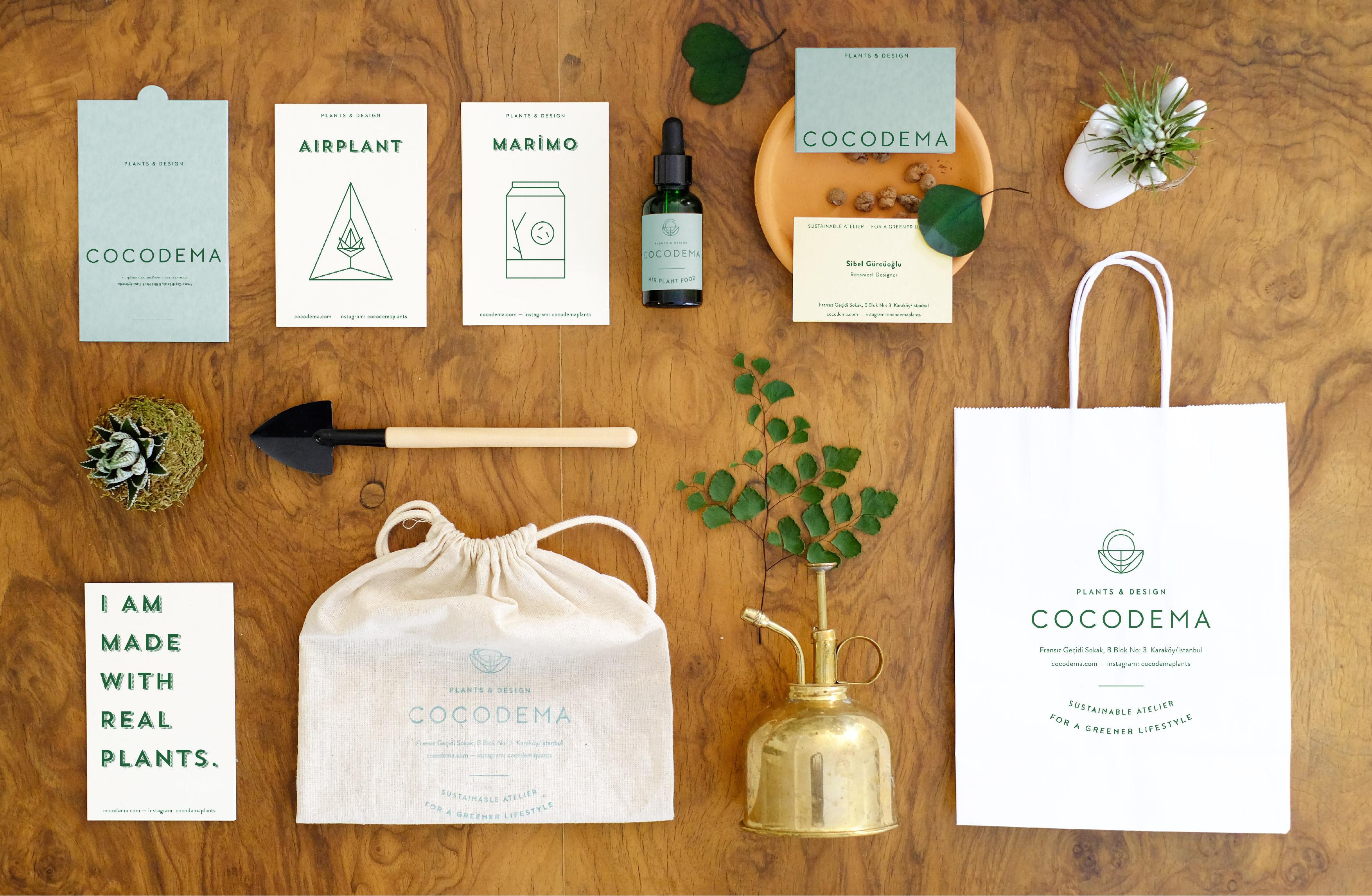 Brand Identity for Cocodema Plants by Archigraphix Design Studio