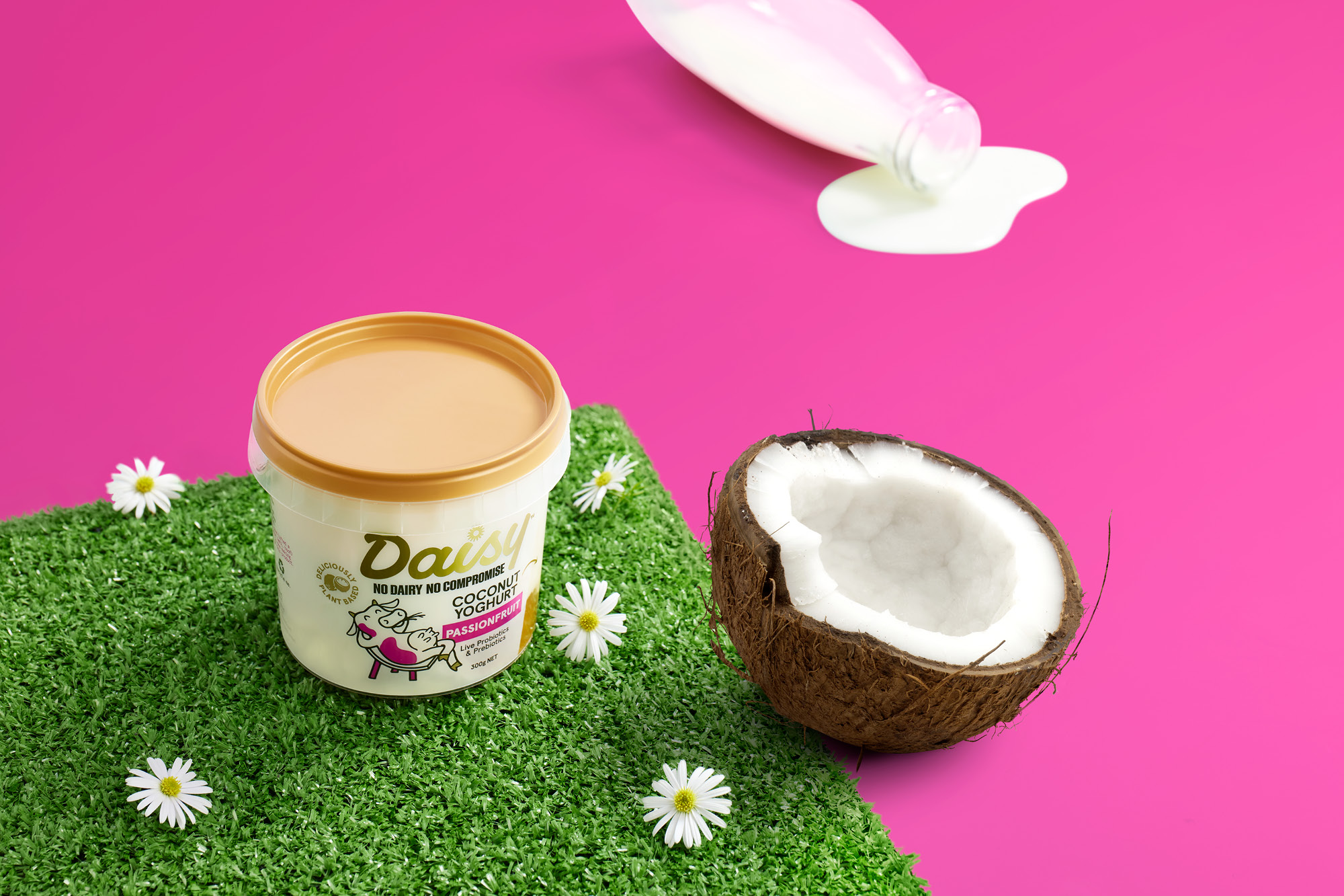 Delicious Plant-Based Yoghurt Range – Its Daisy Not Dairy