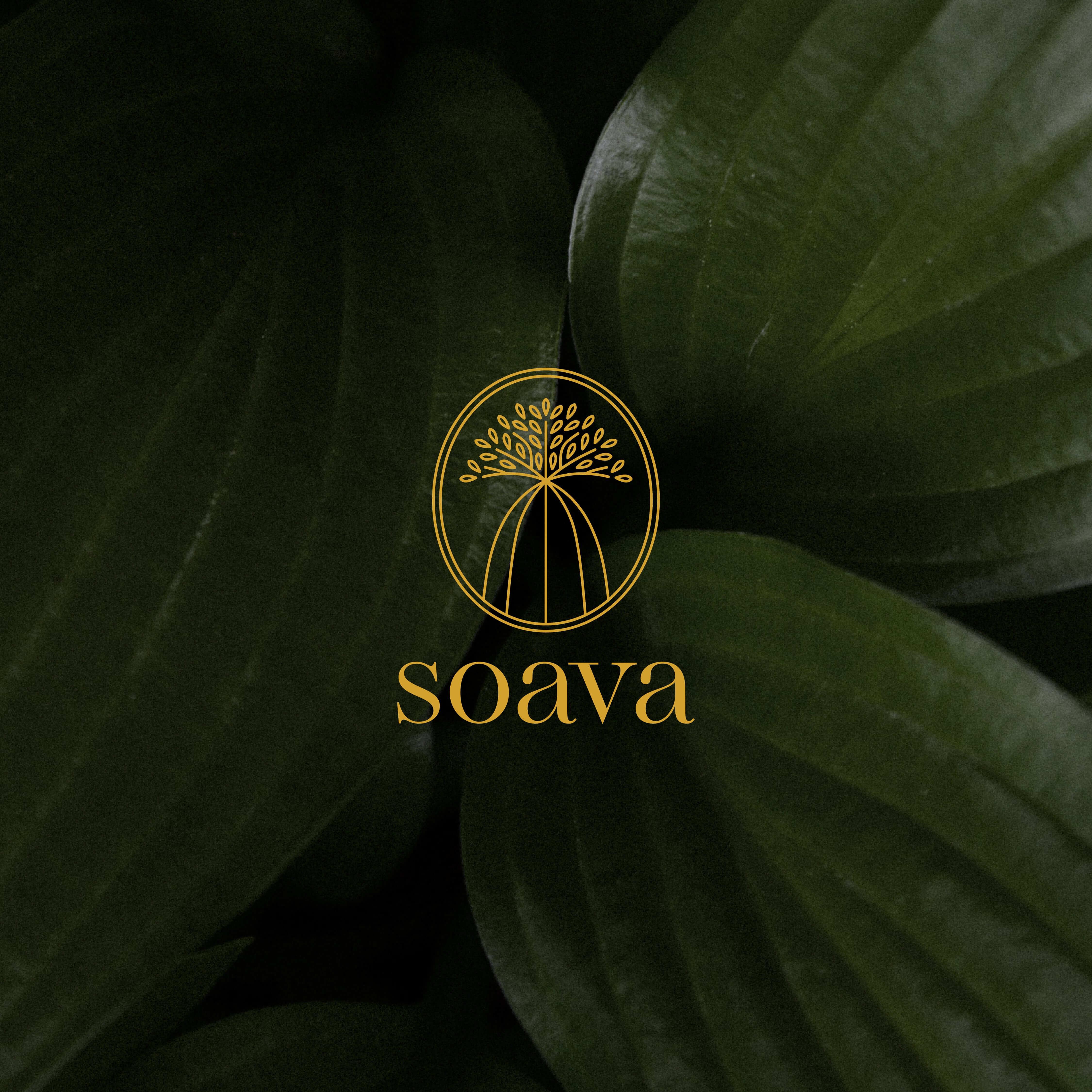 Devika Gupta Designs Creates Branding that Celebrates Sustainable Products by Madagascar Natives