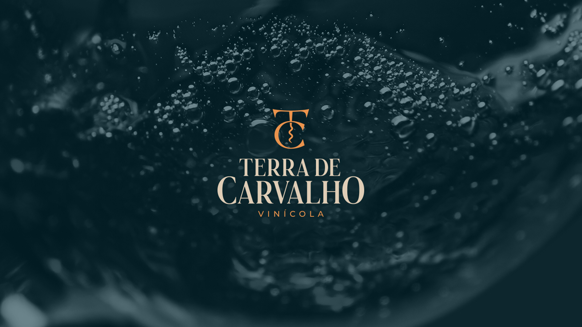Brand Identity for Terra de Carvalho Winery by Lucas Coradi