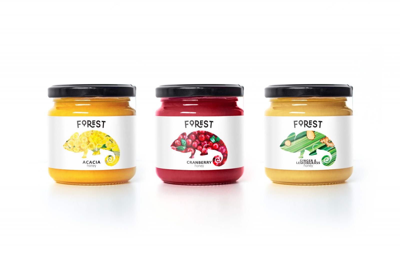 Forest Goods Brand Identity and Packaging Design by Room.11 Agency