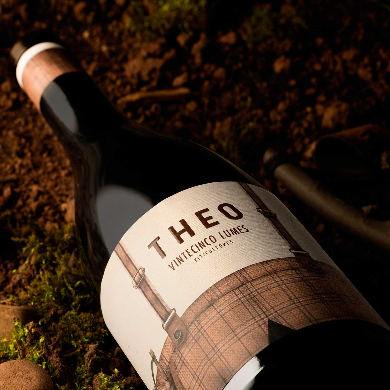 Enpedra Wine Design Studio Creates Wine Label Design for Theo