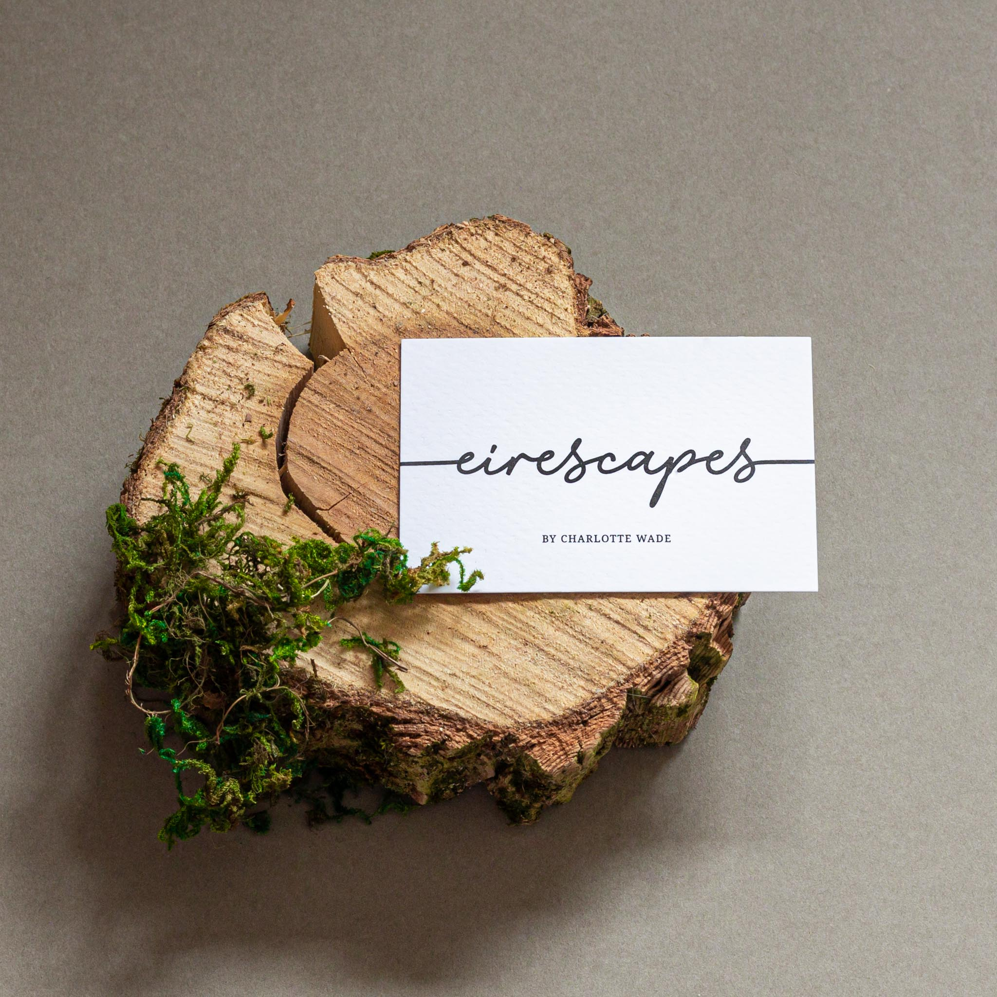 Landscape Photographer Creates Nature Inspired Brand Identity