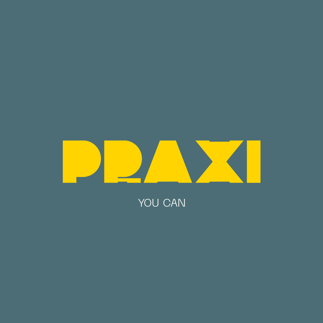 Akson Bereau Create Identity and Naming for Web Design Courses Programme Praxi