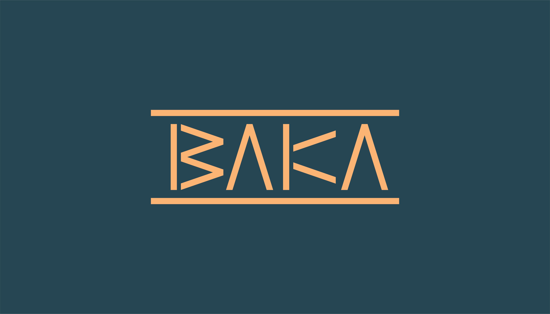 Baka Furniture Design Company brand Identity Created by Mam'Gobozi Design Factory