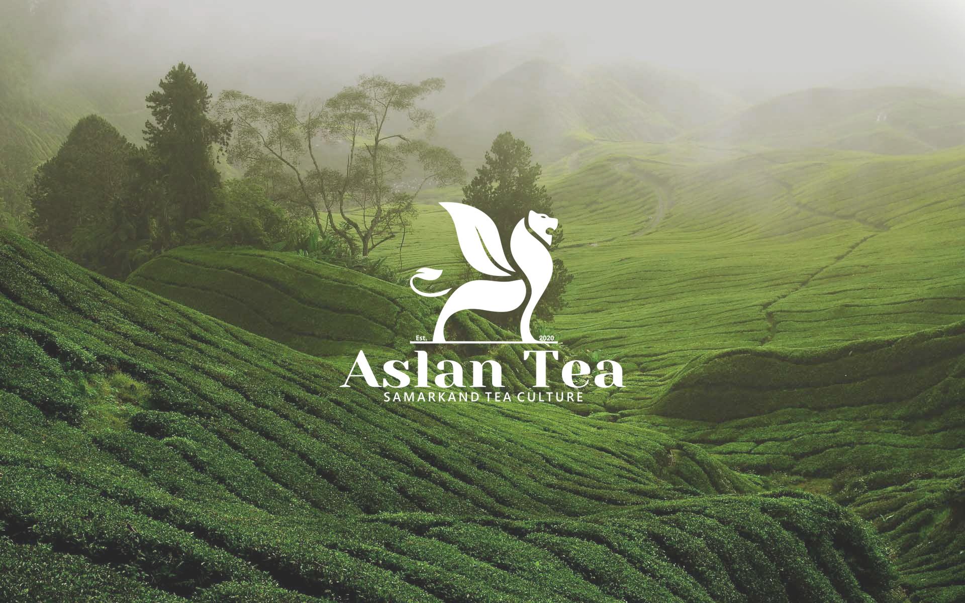 Aslan Tea Packaging By Minim Brand Design Agency