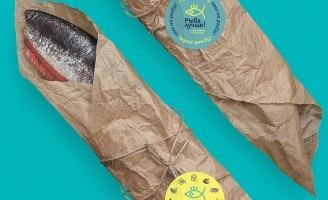 Branding for Better Fish Store Chain by Trava Studio