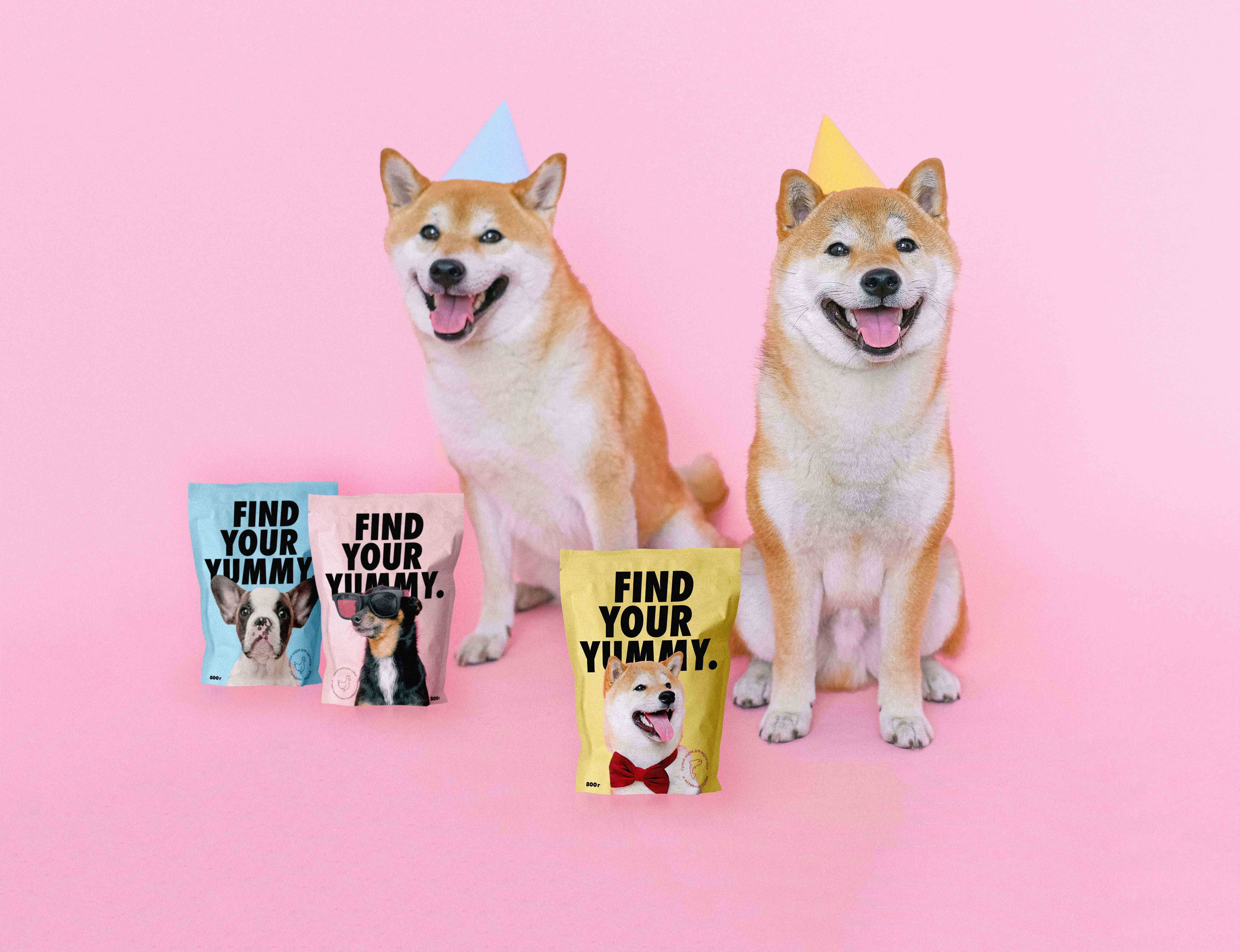 Dog Food Find Your Yummy Student Concept Packaging Design by Nastya Timoshenko