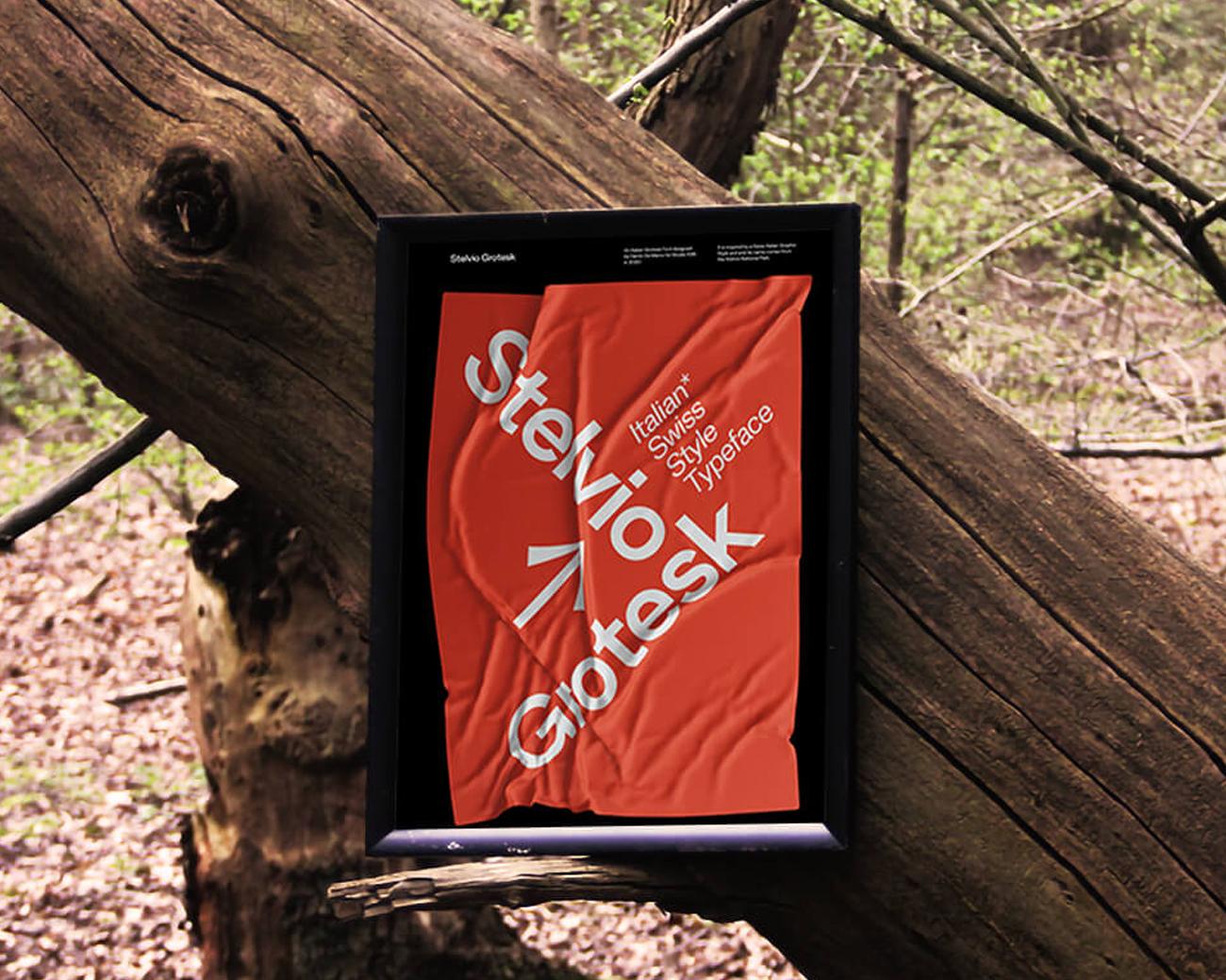10 Posters that Promote Stelvio Grotesk
