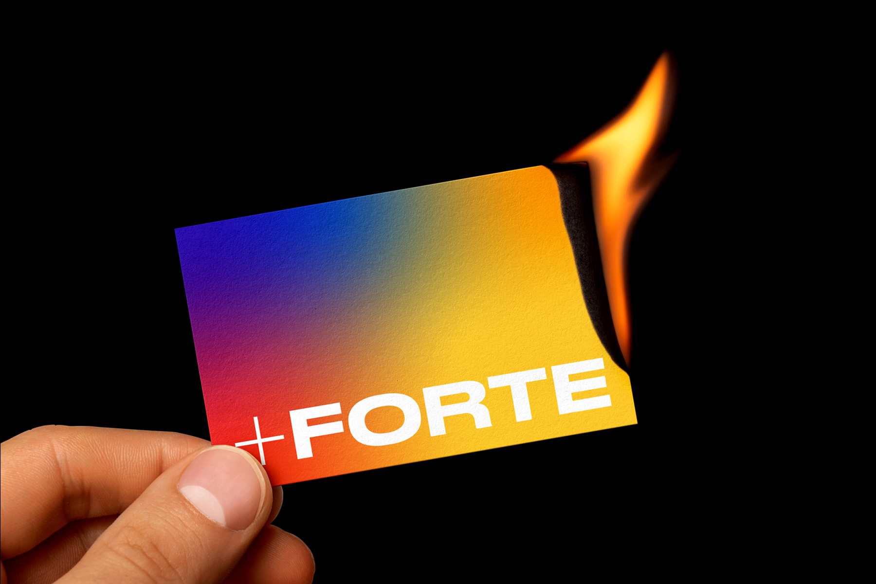 Student Conceptual Branding for +Forte
