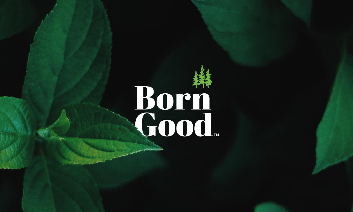 Lucid Design Create Born Good Detergent Packaging Design and Digital
